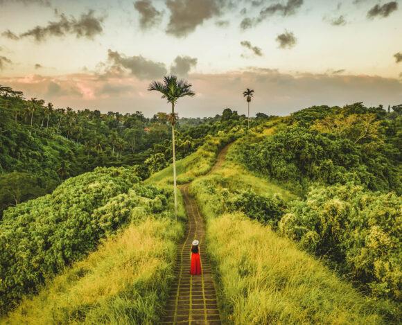 Ubud, Bali, Green nature, убуд, Балі, Бали